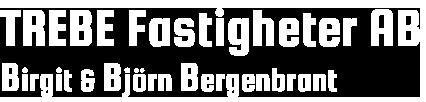 Trebe Fastigheter AB Retina Logo